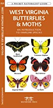 West Virginia Butterflies & Moths: An Introduction to Familiar Species (Wildlife and Nature Identification)