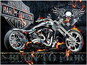Ukerdo Skeleton Harley Motorcycle Picture Arts Wall Décor DIY 5D Diamond Painting Kits Embroidery Full Drill for Gift