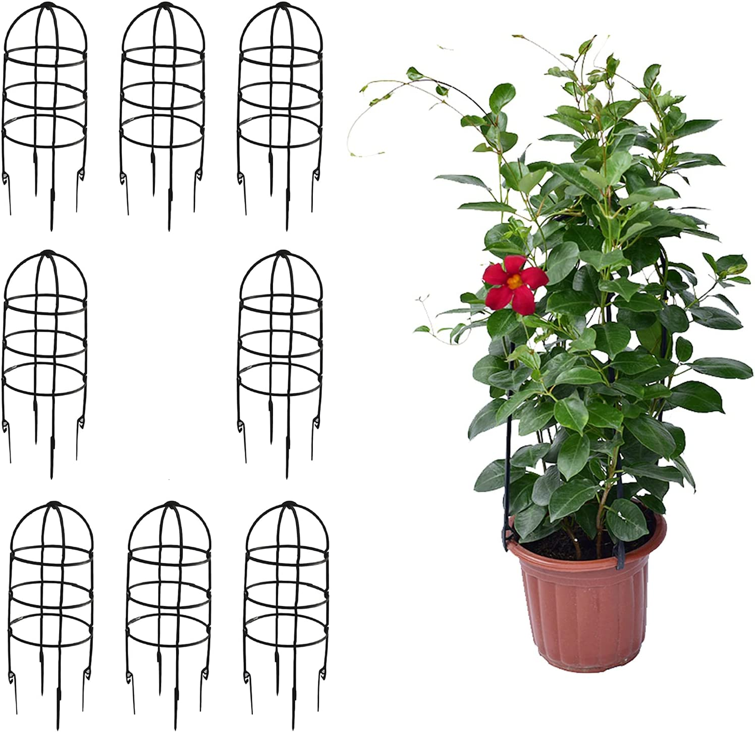 keebgyy 8 Sets Plant specialty shop Max 75% OFF Cages Stakes Vegetable Tomato Garden