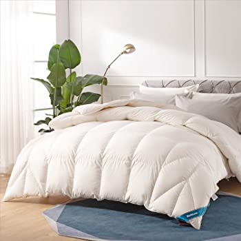 Bedsure White Down Comforter Queen Size - 100% Cotton Cover Hypoallergenic - 700+ Fill Power 50oz Fill Lightweight Duvet Insert - Down Proof with Corner Tabs for Fall/Winter