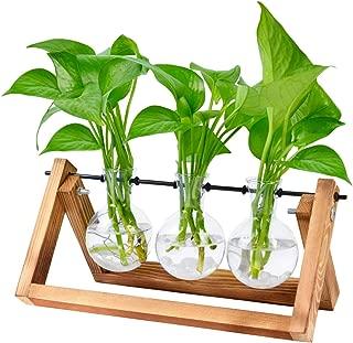 Bulb Glass Planter Vase Terrarium Hydroponics Desktop Planter Vase Holder with Wooden Stand and Metal Swivel Holder for Home Garden Office Decoration - 3 Bulb Vase