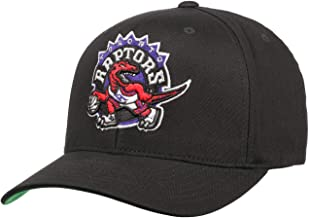 Mitchell & Ness Toronto Raptors INTL537 Cotton Team Logo Pinch Panel 110 Curved Flexfit Snapback Cap One Size
