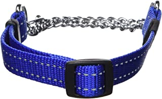 Rogz Obedience Dog Collar, Blue, Medium