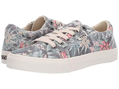Taos Footwear Plim Soul (Black Tropical Vintage Print) Women
