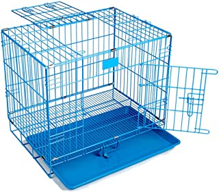 Pet Paradise Pet Dreams Powder Coated Iron Cage with Removable Tray for Dog (24-inch, Large Blue)