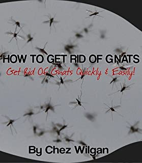 How To Get Rid Of Gnats – Get Rid Of Gnats Fast & Easy