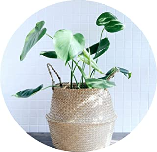 Best rattan planters costco Reviews