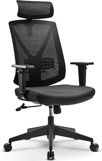 BASETBL Bürostuhl Ergonomisch, Schreibtischstuhl aus Mesh mit Hoher Rückenlehne, Verstellbare Kopfstützenarme und Lendenwirbelstütze, Computer…