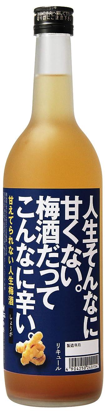 炭水化物眠り咽頭中野BC 甘えてられない人生梅酒 しょうが 瓶 [ 720ml ]