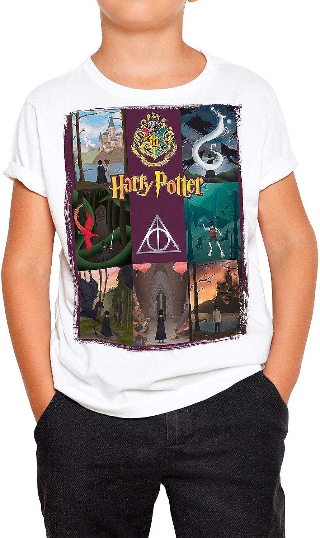 Camiseta Cine Niño - Unisex Harry Potter: Amazon.es: Ropa y ...