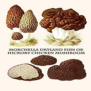 Morchella the true morels is a genus of edible mushrooms closely related to anatomically simpler cup fungi These distincti...
