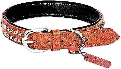 Petsupã¢Â® Dog Leather Collar With Designer Studs,Tan Color-Medium