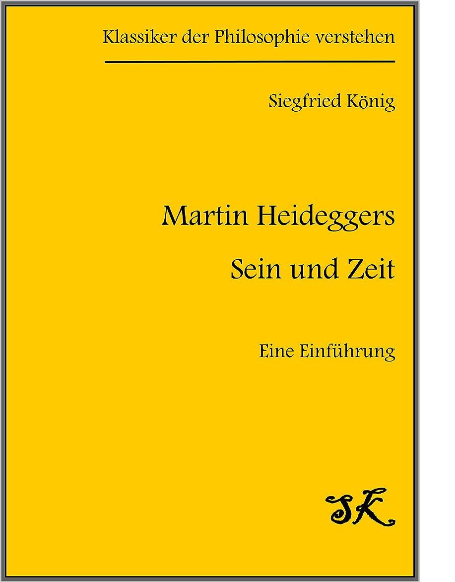 微視的海洋流用するMartin Heideggers