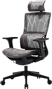 SIHOO Ergonomic Office Chair High Back Mesh Office Chair Computer Desk Chair,Adjustable 3D Armrest,Unique Elastic Lumbar Support (Gery)