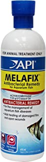 API Bacterial Infection Remedy, 473 ml