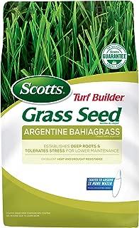 bahia grass seed florida
