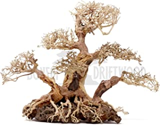 Bonsai Driftwood Aquarium Tree BLS (12 Inch Height x 9 Inch Width x 16 Inch Length) Natural, Handcrafted Fish Tank Decoration | Helps Balance Water pH Levels, Stabilizes Environments | Easy to Install