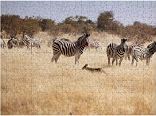 300 Piece Wooden Jigsaw Puzzle Wild Zebra Herd in Namibia National Park Jigsaw Puzzles Fun Game Toys Birthday Gifts (Witho...