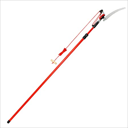 Corona Cipper 211252 TP 4212 DualLink Tree Saw and Pruner, 12-Foot, Feet, Red