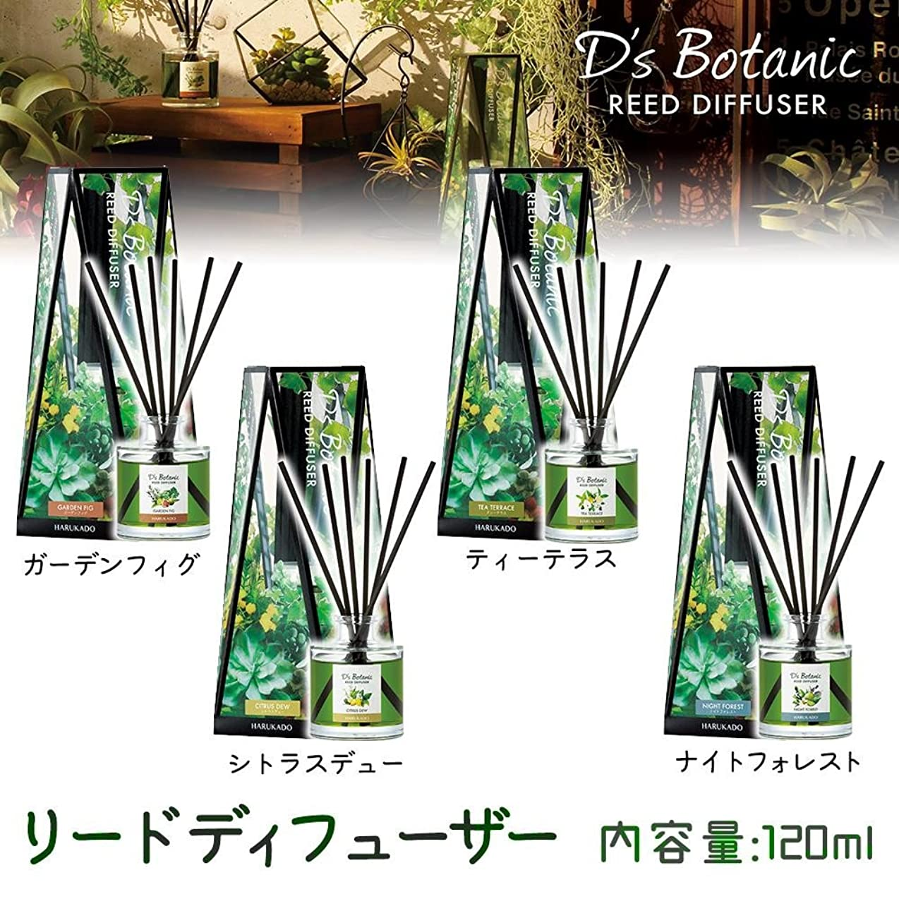 神社束ねる水平D'S Botanic(デイズボタニック) リードディフューザー ルームフレグランス 120ml ナイトフォレスト?6231【人気 おすすめ 】