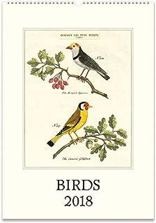 Cavallini Papers 2018 Birds Wall Calendar