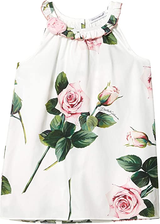 Rose Rosa Fdo Panna