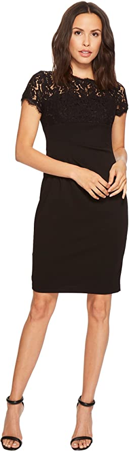 Adrianna Papell Cynthia Lace and Knit Crepe Sheath