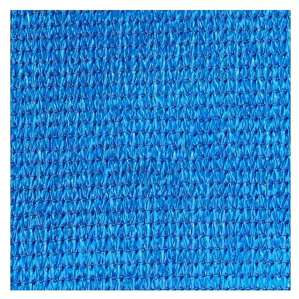 気候の山発見するエンゲージメントLIANGLIANG オーニングシェード遮光ネット パティオ ガレージ シェードセイル 高密度 厚くする 老化防止、 ポリエチレン、 カスタマイズ可能 (Color : Blue, Size : 3X3X3M)