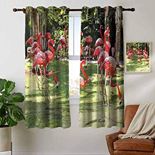petpany Window Curtain Fabric Flamingo,Flamingo Bird Model in The Garden in Vibrant Colors Under Sun Rays Shadows,Pink and Green,Rod Pocket Curtain Panels for Bedroom & Living Room 42