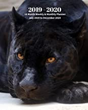 2019 - 2020 | 18 Month Weekly & Monthly Planner July 2019 to December 2020: Black Panther Wildlife Animal Vol 16 Monthly Calendar with U.S./UK/ ... Holidays– Calendar in Review/Notes 8 x 10 in.