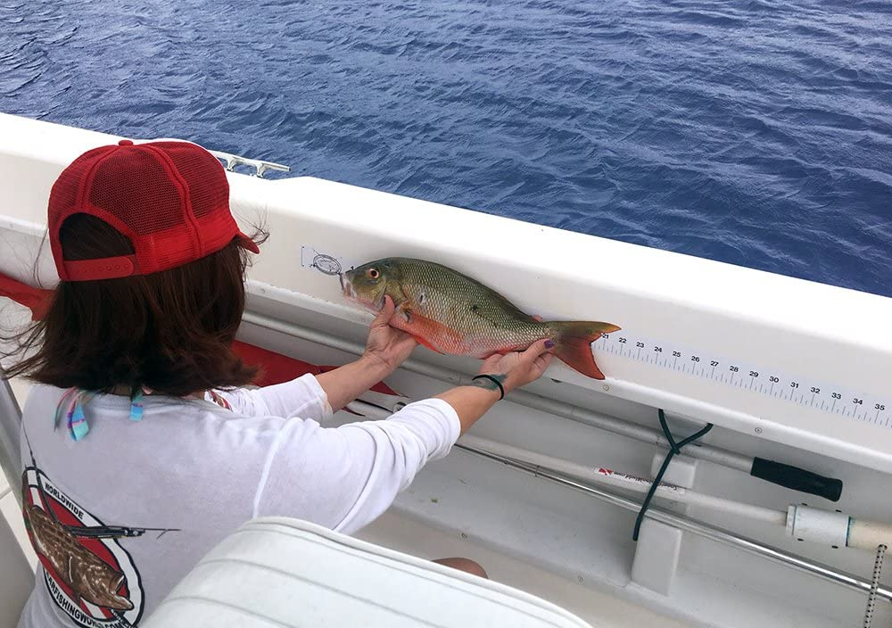 Fish Ruler Max 51% OFF Sticker Decal for Fishing Boat Max 70% OFF or Canoe Spearfishing