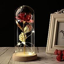 YSJJNDH Nachtlampje Party Bruiloft Valentijn Gift Rose In Glas Koepel Schoonheid Rose Voor Altijd Rose Bewaarde Rose Speci...