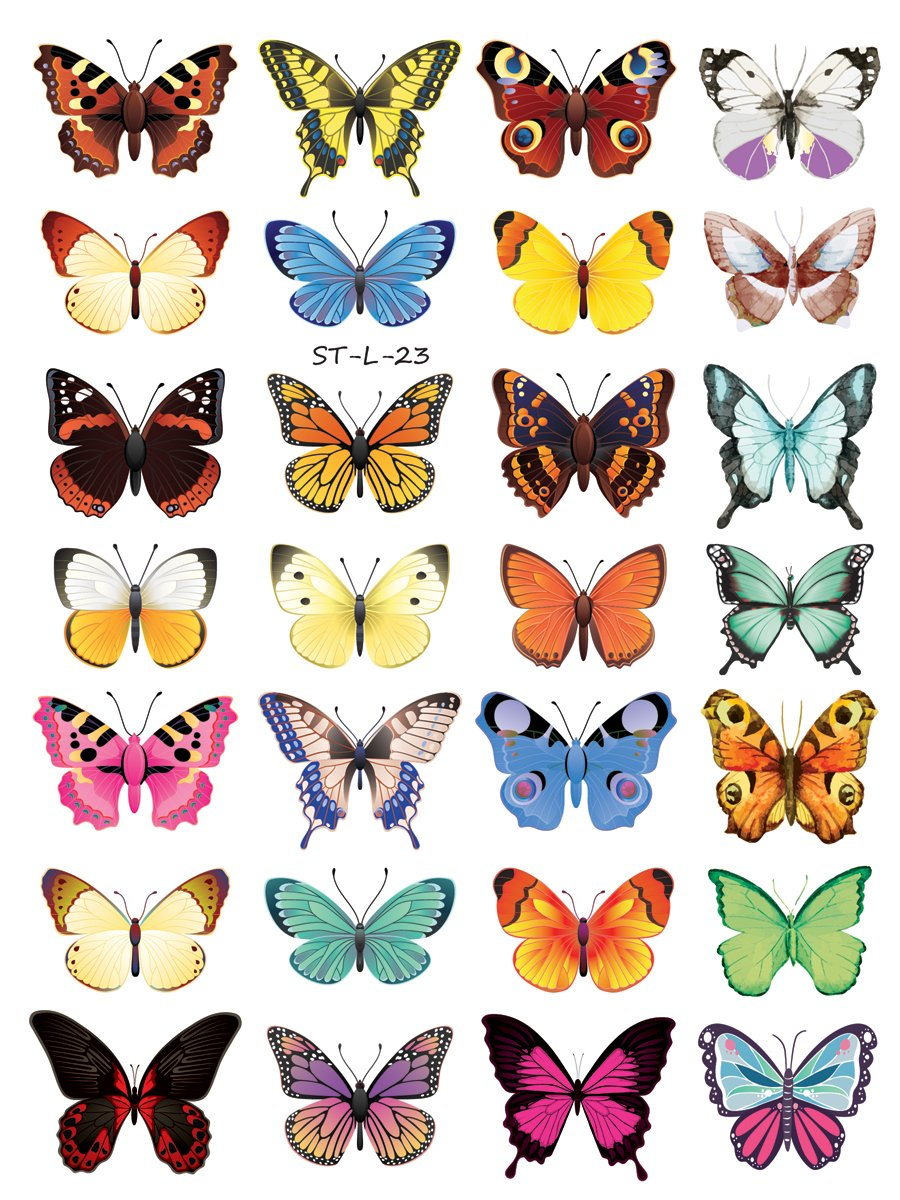 5 ☆ popular Supperb Temporary Ranking TOP8 Tattoos Butterflies 28 -