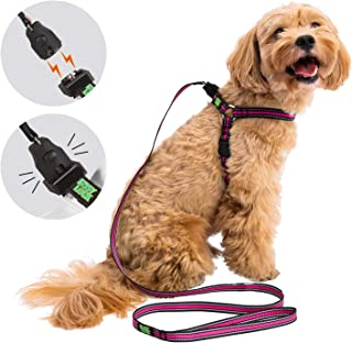 Easy Lock Dog Harness Leash for Small Medium Large Dogs Large Breed, One Hand Easily Connect No Pull Dog Harness and Leash Set, 360° Magnetic Clasp Adjustable Reflective Pet Vest
