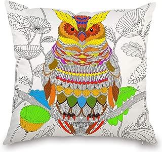 JES&MEDIS DIY Coloring Graffiti Owl Pattern Pillowcase Home Decorations Craft Kit Pillow Cover Square 18