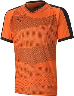 PUMA Teamfinal Indoor Jersey Camiseta Hombre