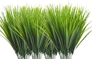 Best wheat grass table Reviews