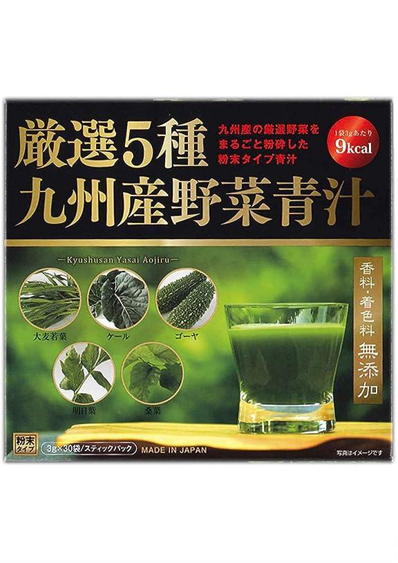 達成するアクセル主張する厳選5種 九州産野菜青汁 3gx30包