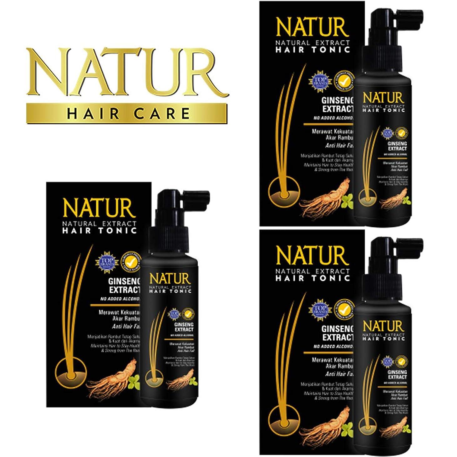 ペア流行している便宜NATUR ナトゥール 天然植物エキス配合 Hair Tonic ハーバルヘアトニック 90ml×3個セット Ginseng ジンセン [海外直商品]