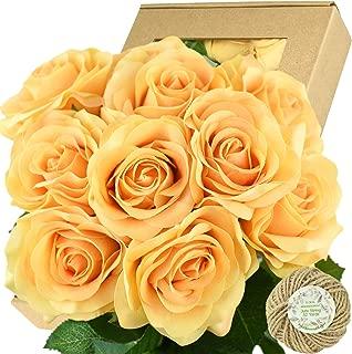 FiveSeasonStuff Fake Roses Wedding Flowers Real Touch Silk Apricot Orange Artificial Flowers 12 Stems