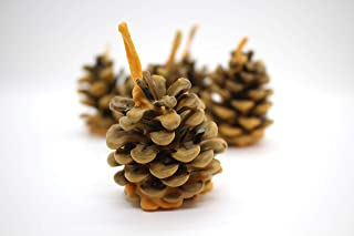 Colored pine cones, Christmas gift idea, Perfect Gift, Gift for him, Grill Tools, Best Fire Starters, Wax Pine Cone, Wedding Favor, Eco Fire Starters