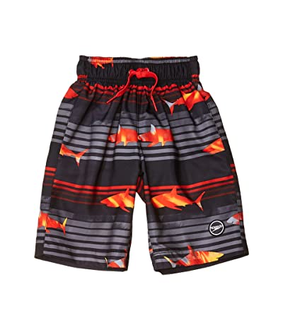 Speedo Kids Shark Wave Redondo Volley Shorts w/ Comfort Liner (Little Kids/Big Kids) Boy
