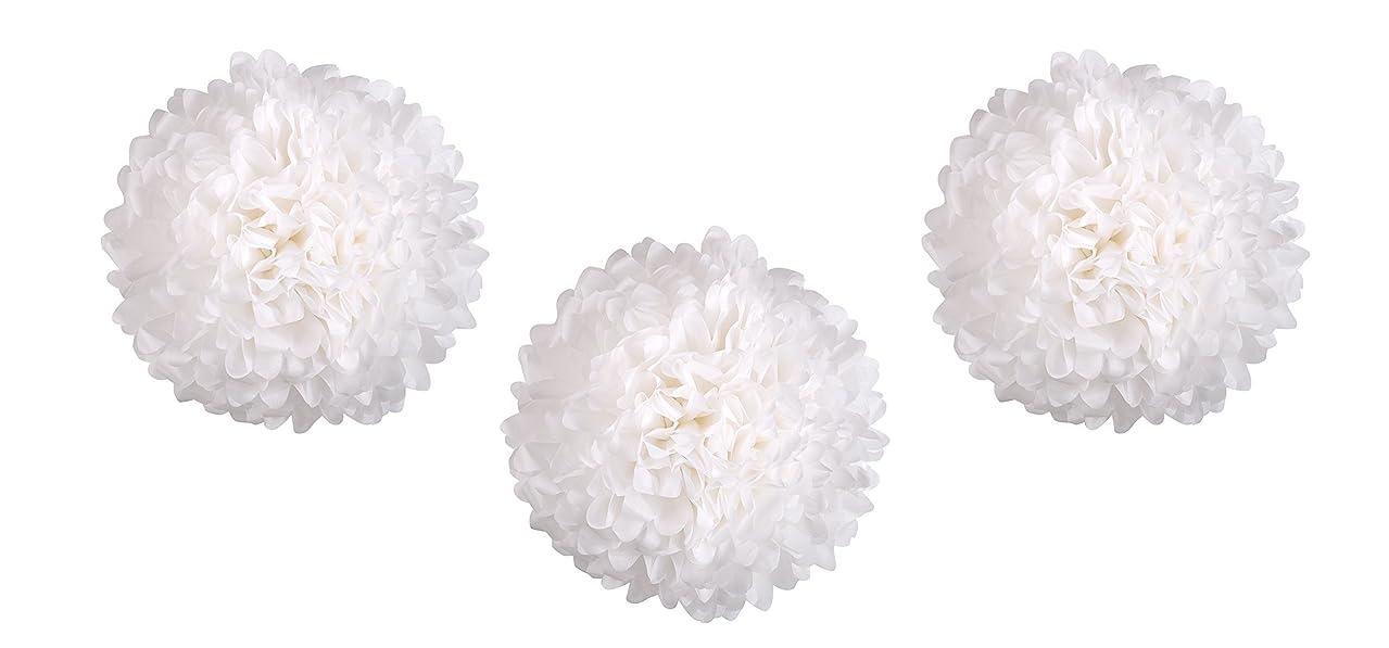 HIART Pom Pom Tissue Flower, 20-Inch, White, Set of 3