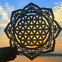 Best the sacred lotus flower Reviews