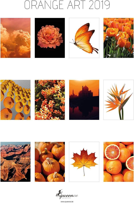 Premium Art-Kalender 2019   Fotokalender   'Orange ART 2019' Kalender im Rahmen   zum Aufhängen   Monatskalender im Rahmen   Weihnachts-Geschenk   Wand-Kalender   Kunstkalender, Größe 40x50 cm B0778LDPFC   Verrückter Preis, Birmingham