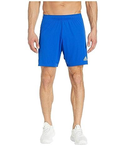 adidas Tastigo 19 Shorts (Bold Blue/White) Men