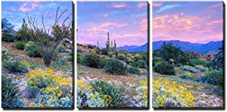 wall26 - Blooming Desert at Sunset - Canvas Art Wall Decor - 16
