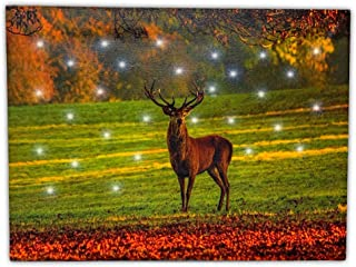 BANBERRY DESIGNS Standing Buck Canvas Lighted Wall Art - LED Light-Up Picture with a Big Buck in a Country Meadow – Wrapped Canvas Print with Lights- Deer Décor