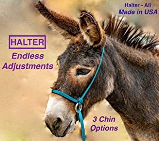 Halter-All Small Miniature Donkey Mule Mini Endless Adjustable Halter & Lead USA