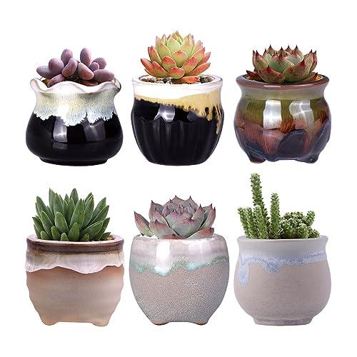 Cactus Pots Indoor Amazoncom